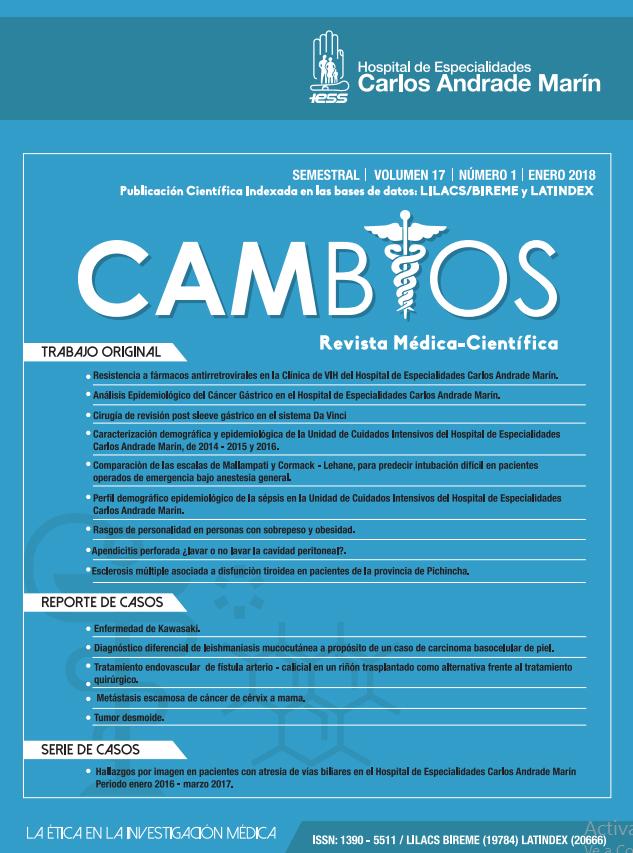 RevistaCambios17.